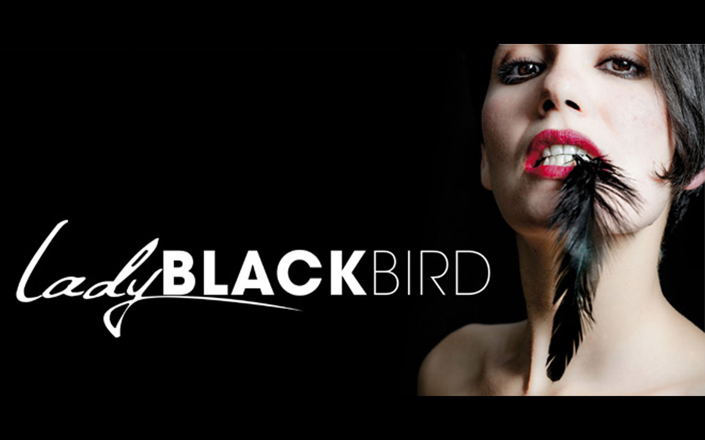Header Concert Lady Black Bird